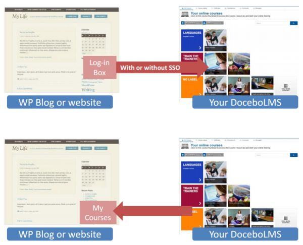 Docebo - WordPress