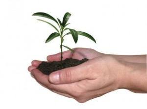 Going Green with eLearning