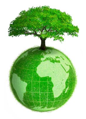 Learning Management System - Green